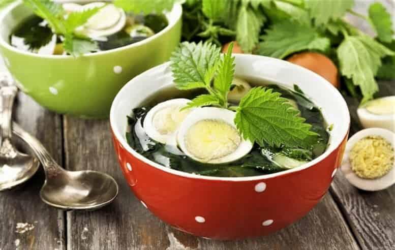крапивный суп со щавелем