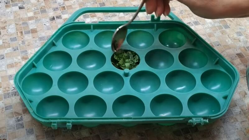 контейнер для заморозки