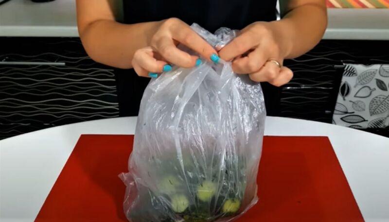 огурцы в пакете