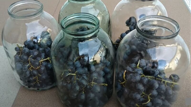 виноград в банках
